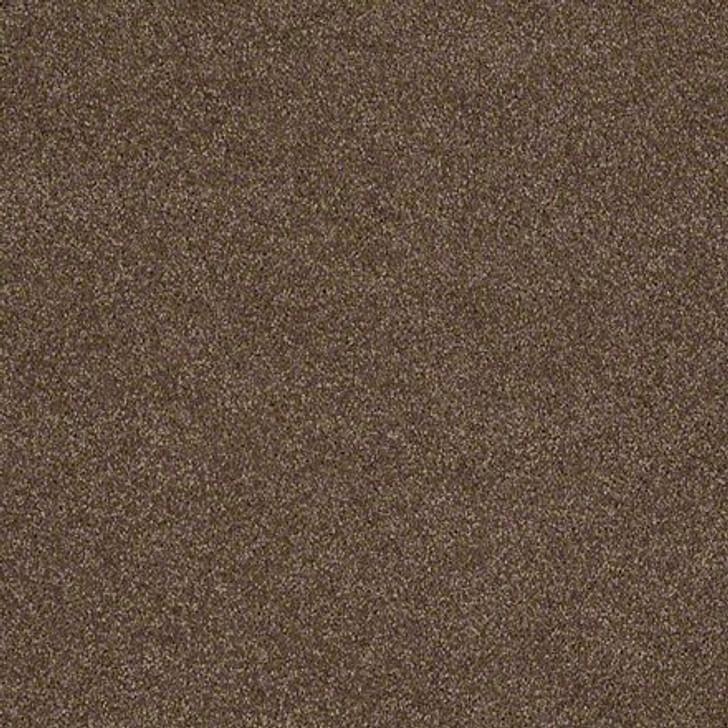 Shaw Lasting Impressions (S) EA585 Couture LifeGuard Carpet
