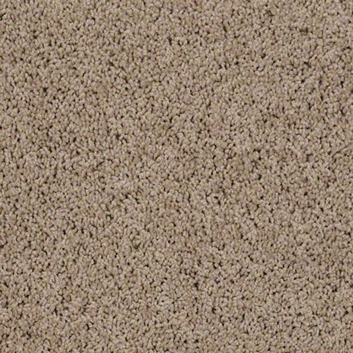 Shaw Brenham (S) Q4741 Prairie Wind ANSO Carpet