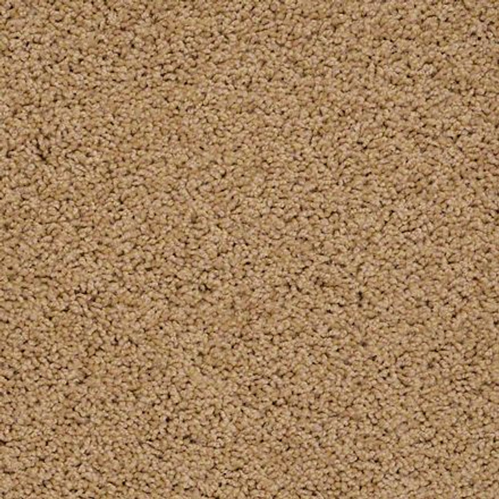 Shaw Brenham (S) Q4741 Summer Field ANSO Carpet