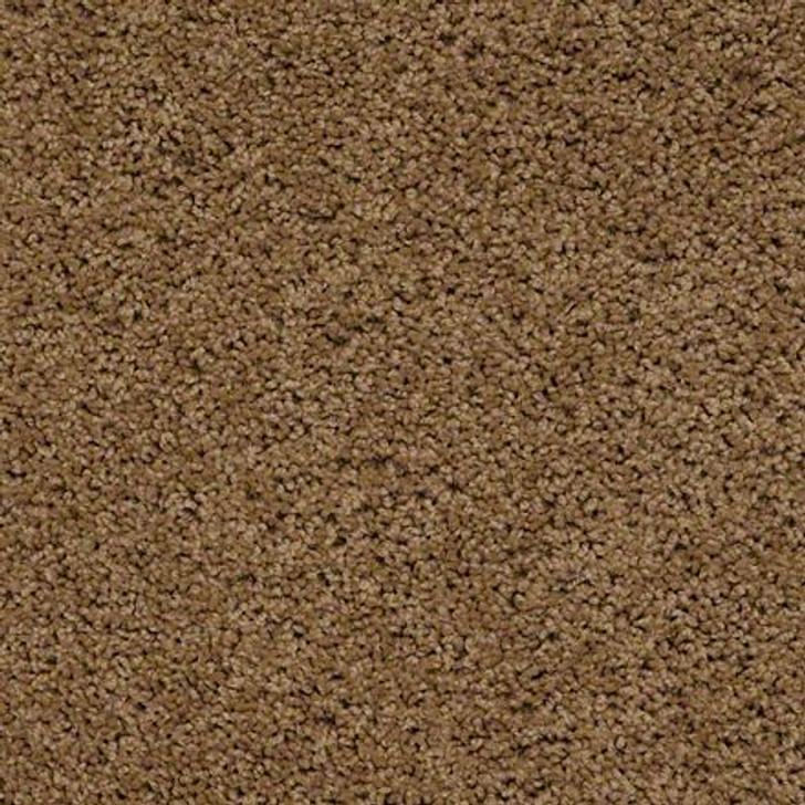 Shaw Brenham (S) Q4741 Villa ANSO Carpet