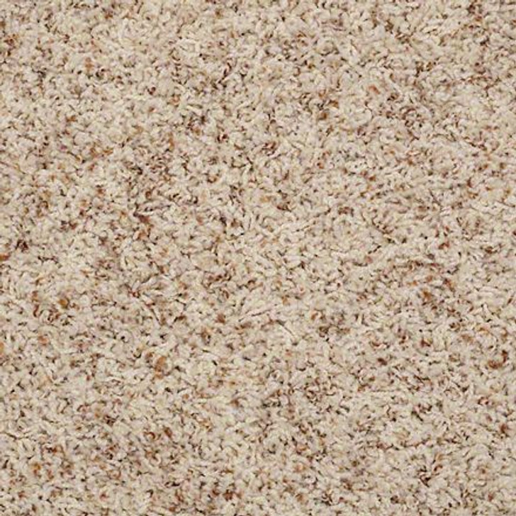 Shaw Alamar (b) Q4532 Pebble Anso Nylon Carpet
