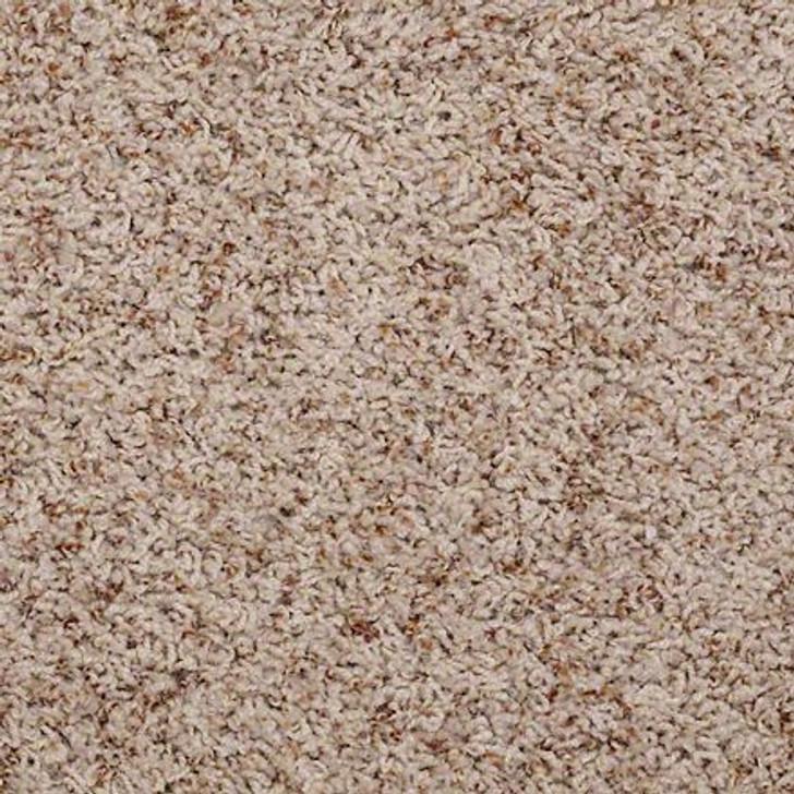 Shaw Alamar (b) Q4532 Dawn Anso Nylon Carpet