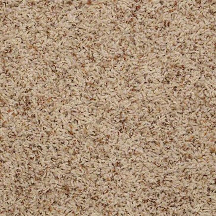 Shaw Alamar (b) Q4532 Linen Anso Nylon Carpet