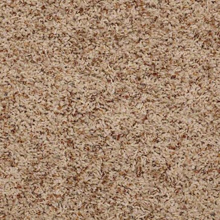Shaw Alamar (b) Q4532 Thistle Anso Nylon Carpet