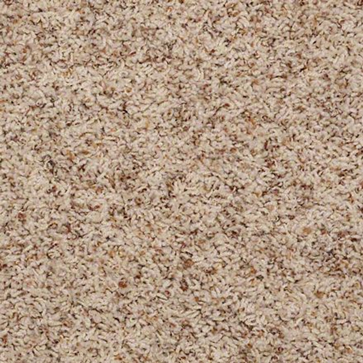 Shaw Alamar (b) Q4532 Sandbox Anso Nylon Carpet