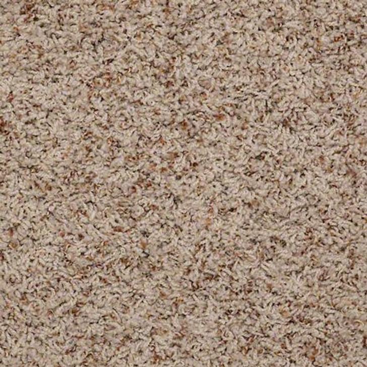 Shaw Alamar (b) Q4532 Thatch Anso Nylon Carpet