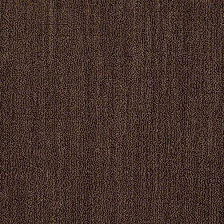 Shaw Real Achievement EA592 Oxford Brown LifeGuard Carpet