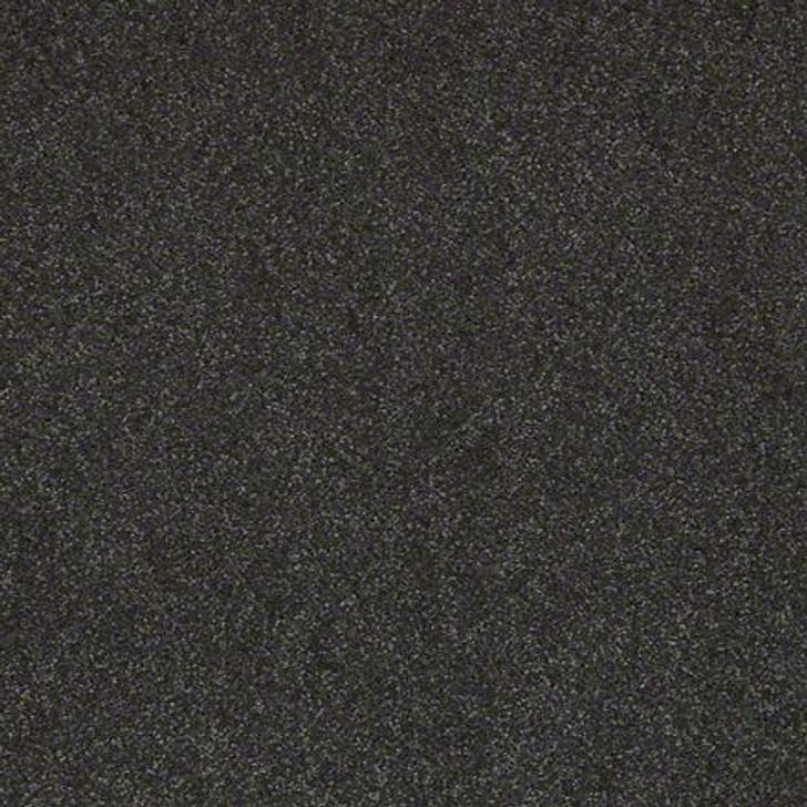 Shaw Lasting Impressions (S) EA585 Alluring LifeGuard Carpet