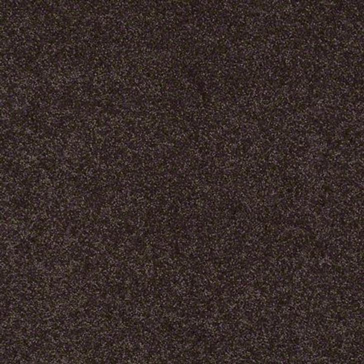 Shaw Lasting Impressions (S) EA585 Vintage LifeGuard Carpet