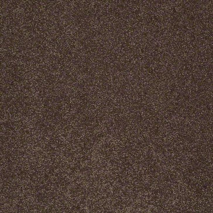 Shaw Lasting Impressions (S) EA585 Divine LifeGuard Carpet