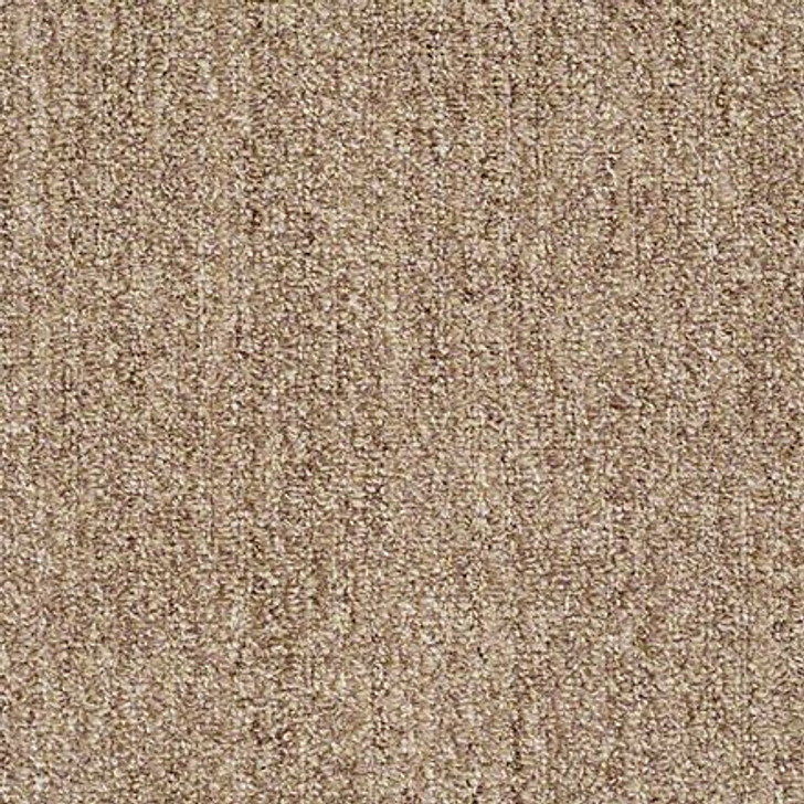 Shaw True Confidence EA597 Classic Tan LifeGuard Carpet