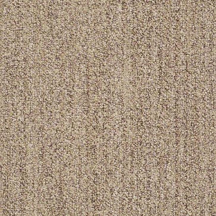 Shaw True Confidence EA597 Taupe LifeGuard Carpet