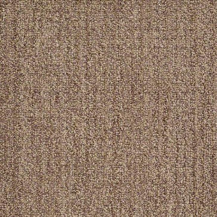 Shaw True Confidence EA597 Mocha LifeGuard Carpet