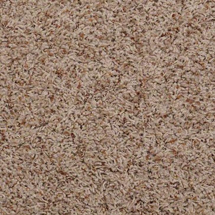 Alamar (b) Q4532 Barnwood Anso Nylon Carpet