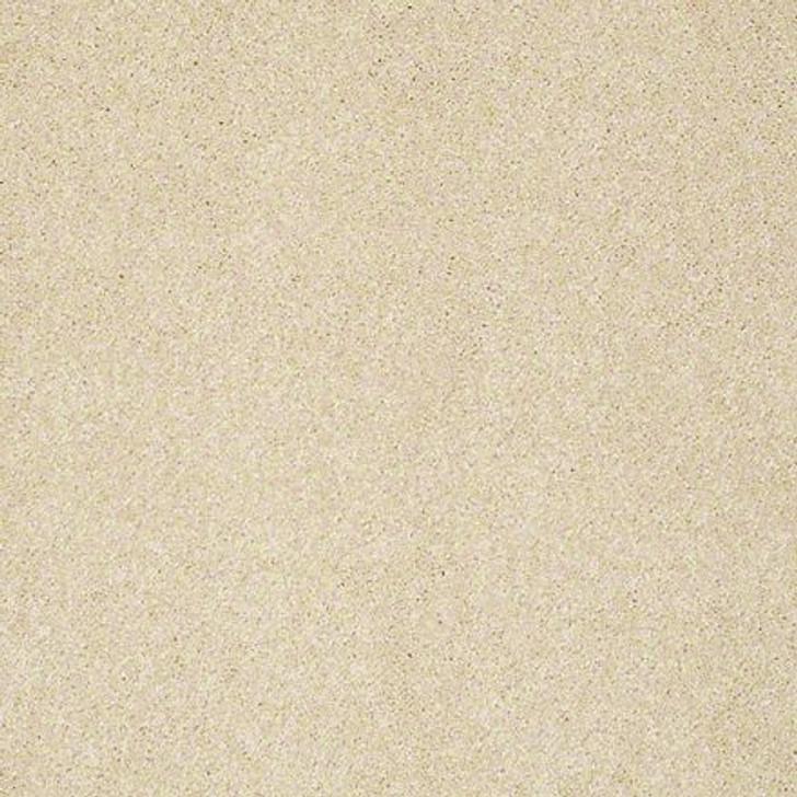 Shaw From the Heart I E0131 Canopy ANSO Nylon Carpet