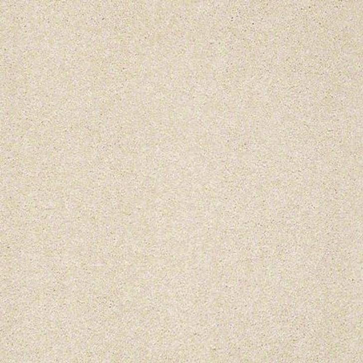 Shaw From the Heart I E0131 Sea Gull ANSO Nylon Carpet