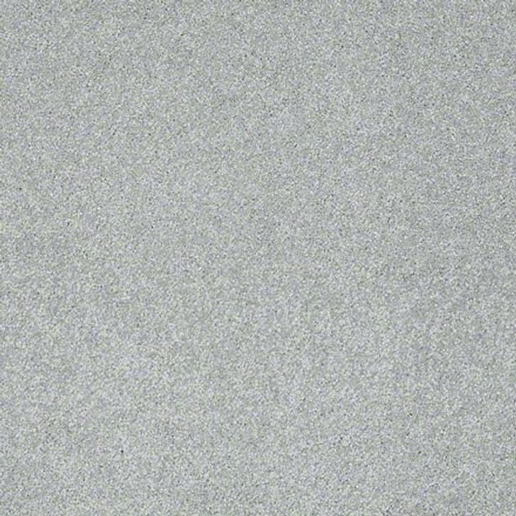 Shaw From the Heart I E0131 Spider Webb ANSO Nylon Carpet
