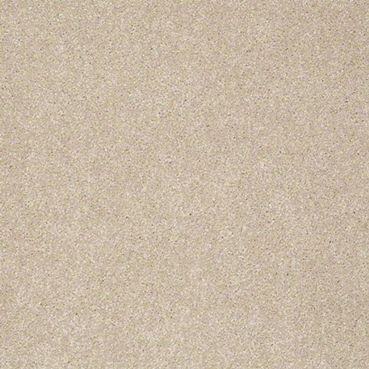 Shaw From the Heart I E0131 Travertine ANSO Nylon Carpet