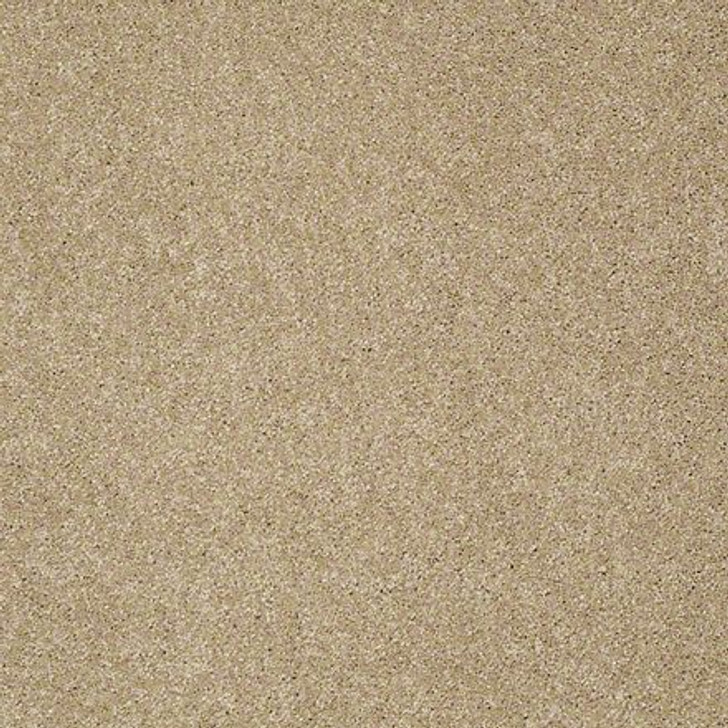 Shaw From the Heart I E0131 Cobblestone ANSO Nylon Carpet