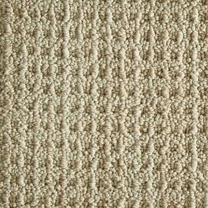 Stanton Atelier Portfolio Figment Nylon Fiber Residential Carpet