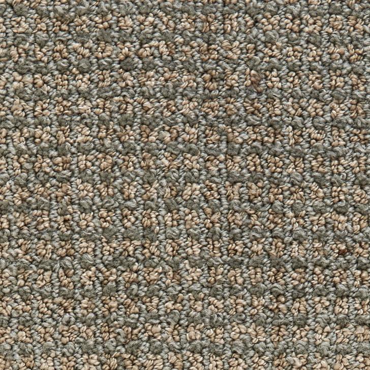 Stanton Atelier Portfolio Frenzy Nylon Fiber Residential Carpet