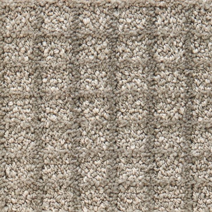 Stanton Atelier Portfolio Mania Nylon Fiber Residential Carpet