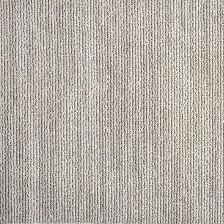 Stanton Atelier Portfolio Quirk Silver Nylon Fiber Residential Carpet