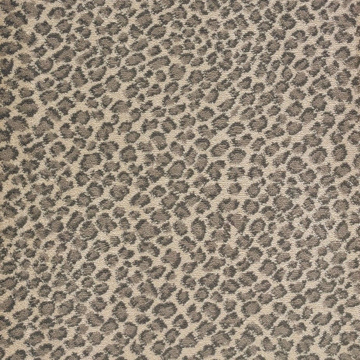 Stanton Lake Collection Lake Safari Polypropylene Fiber Residential Carpet