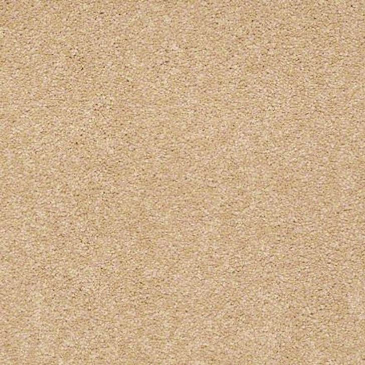 Shaw Ultimate Expressions - Cornfield - Georgia Carpet Industries