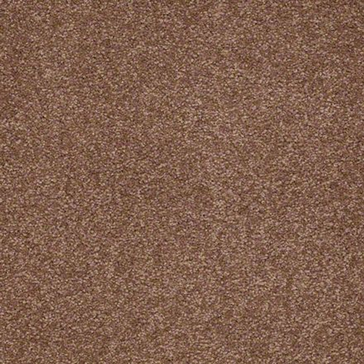 Shaw Ultimate Expressions - Tuscany - Georgia Carpet Industries