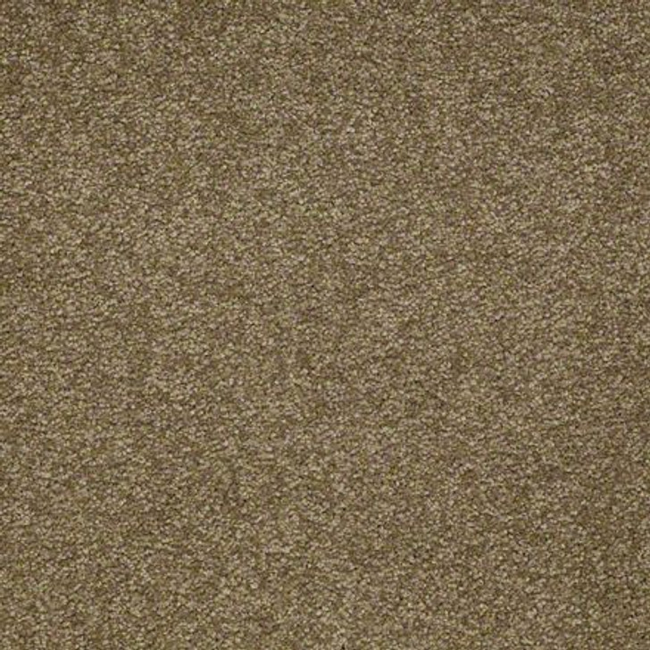 Shaw Ultimate Expressions - Green Tea - Georgia Carpet Industries