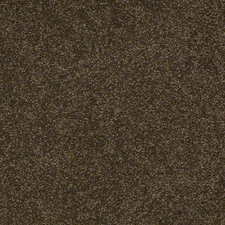 Shaw Ultimate Expressions - Tropical Vine - Georgia Carpet Industries