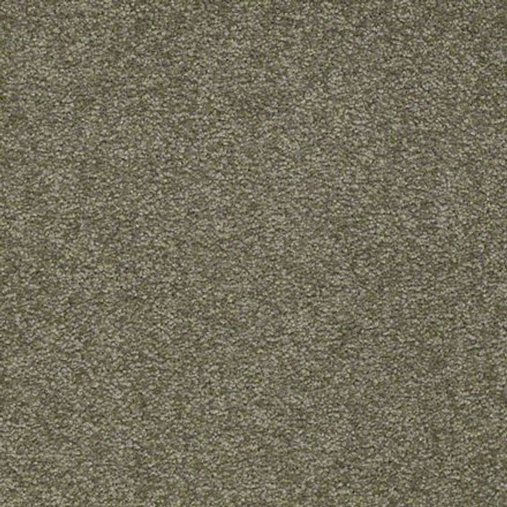 Shaw Ultimate Expressions - Alpine Fern - Georgia Carpet Industries