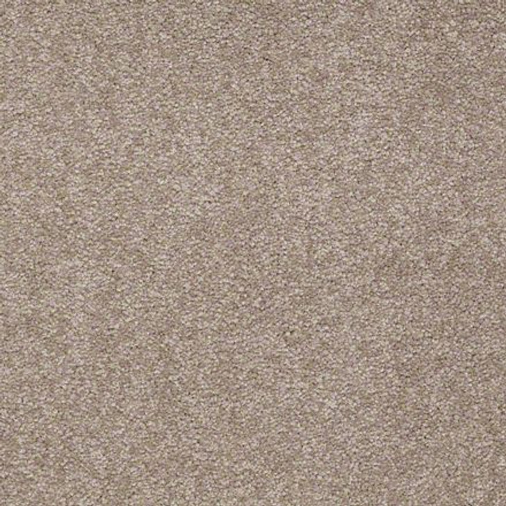 Shaw Ultimate Expressions - Chinchilla - Georgia Carpet Industries