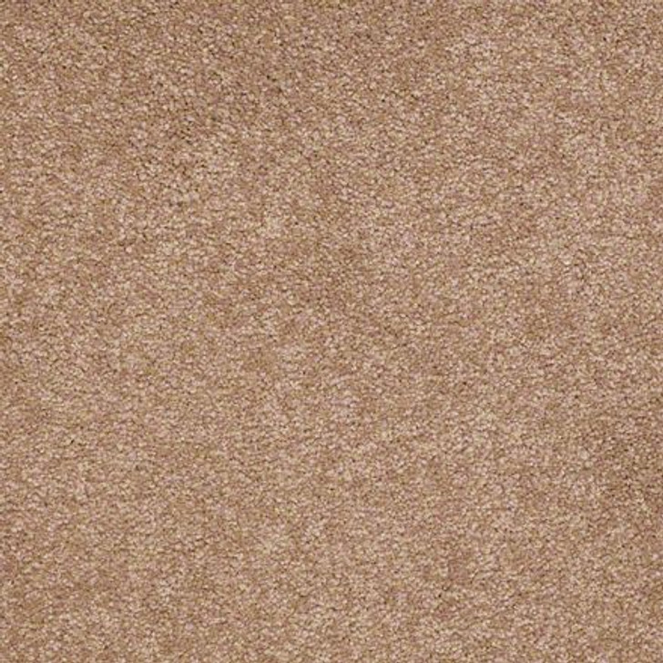Shaw Ultimate Expressions - Muffin - Georgia Carpet Industries
