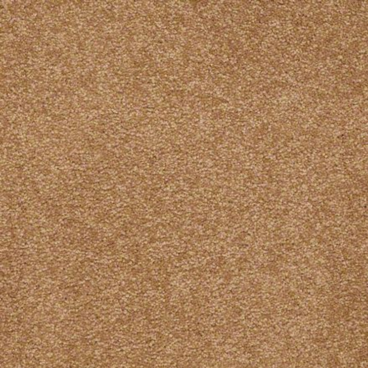Shaw Ultimate Expressions - Peanut Brittle - Georgia Carpet Industries
