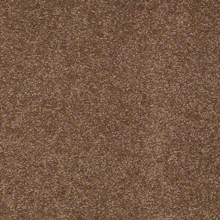 Shaw Ultimate Expressions - Pine Cone - Georgia Carpet Industries
