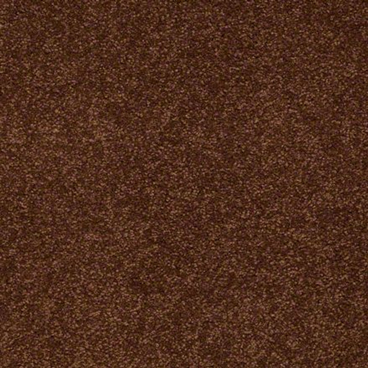 Shaw Ultimate Expressions - Tortoise Shell - Georgia Carpet Industries