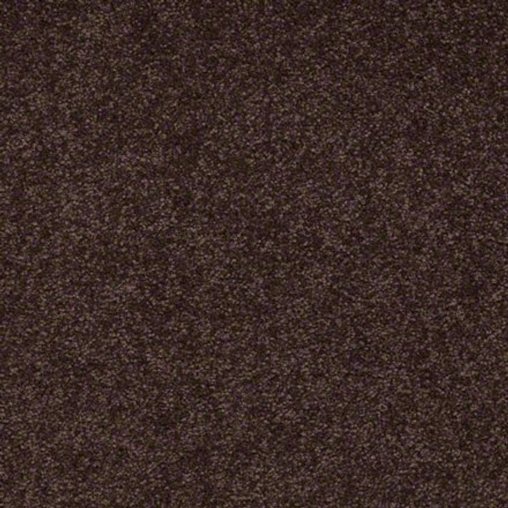 Shaw Ultimate Expressions - Tundra - Georgia Carpet Industries