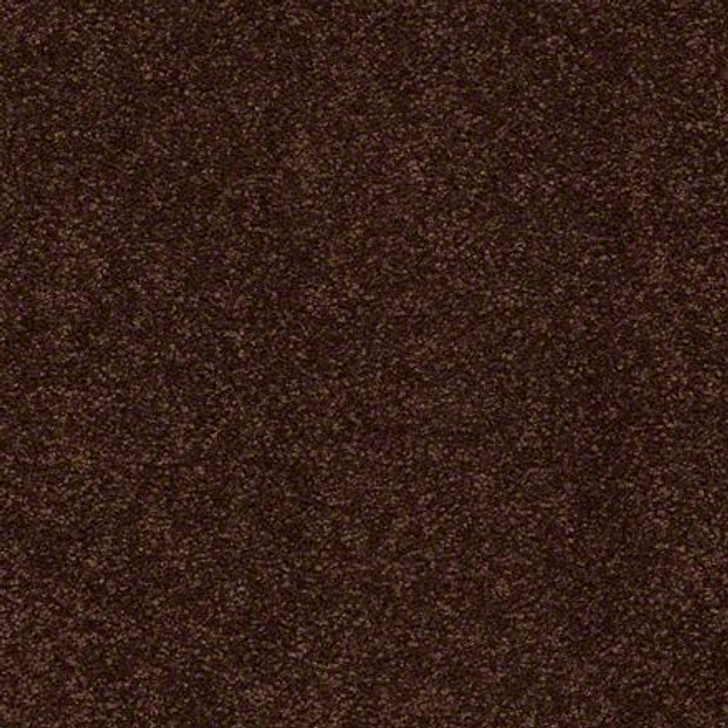 Shaw Ultimate Expressions - Coffee Bean - Georgia Carpet Industries