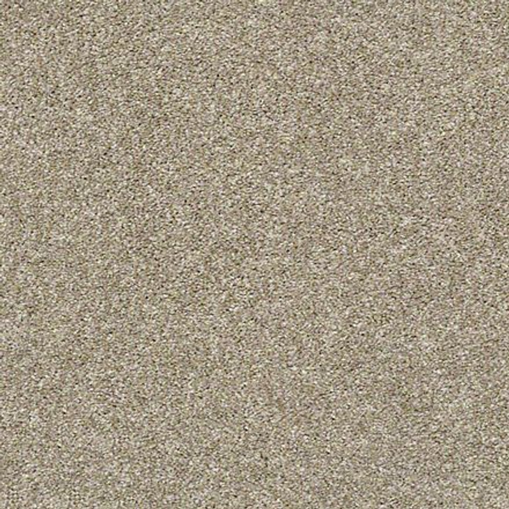 Shaw All Over it I E9870 Raw Wood Classicbac Carpet
