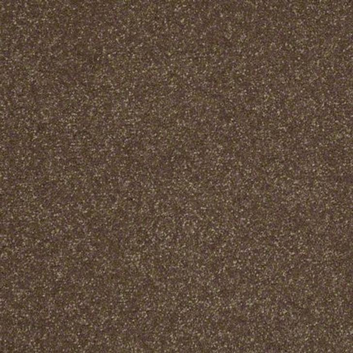 Shaw Secret Escape II 12 E0050 Green Tea Clear Touch Carpet