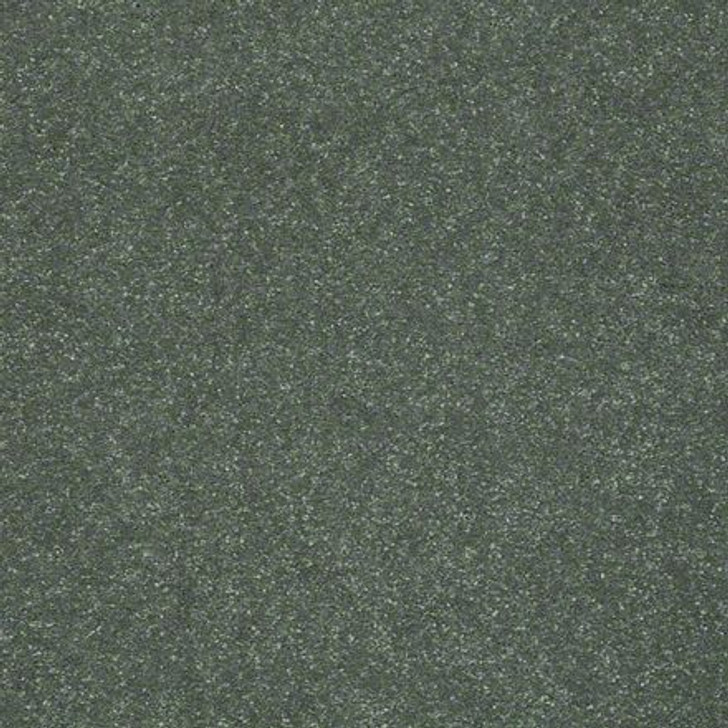 Shaw Secret Escape II 15 E0051 Spruce Clear Touch Carpet