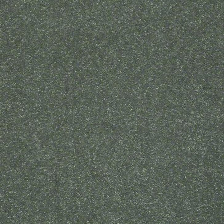 Shaw Secret Escape II 15 E0049 Spruce Clear Touch Carpet