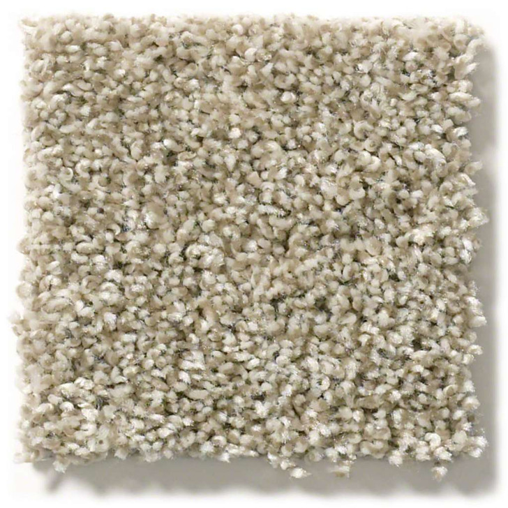 Shaw Shake It Up (T) E9698 Residential Carpet