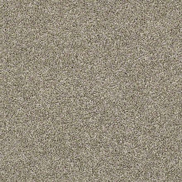 Shaw Shake It Up (T) E9698 Owl Classicbac Carpet