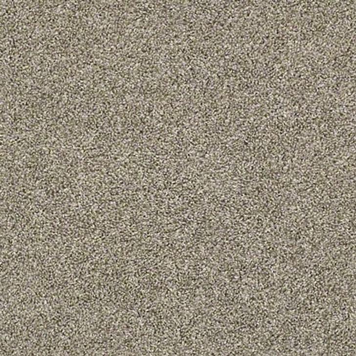 Shaw Shake It Up (T) E9698 Owl Classicbac Carpet