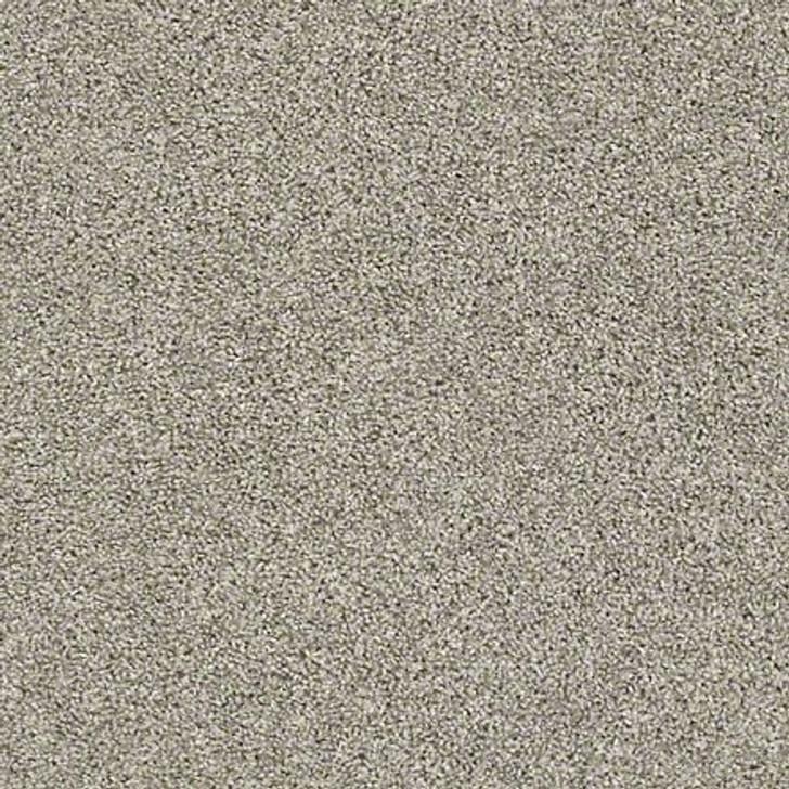 Shaw Shake It Up (T) E9698 Ornamental Gate Classicbac Carpet