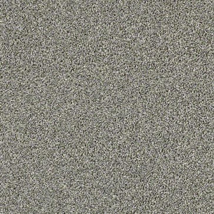Shaw Shake It Up (T) E9698 Dolphin Classicbac Carpet