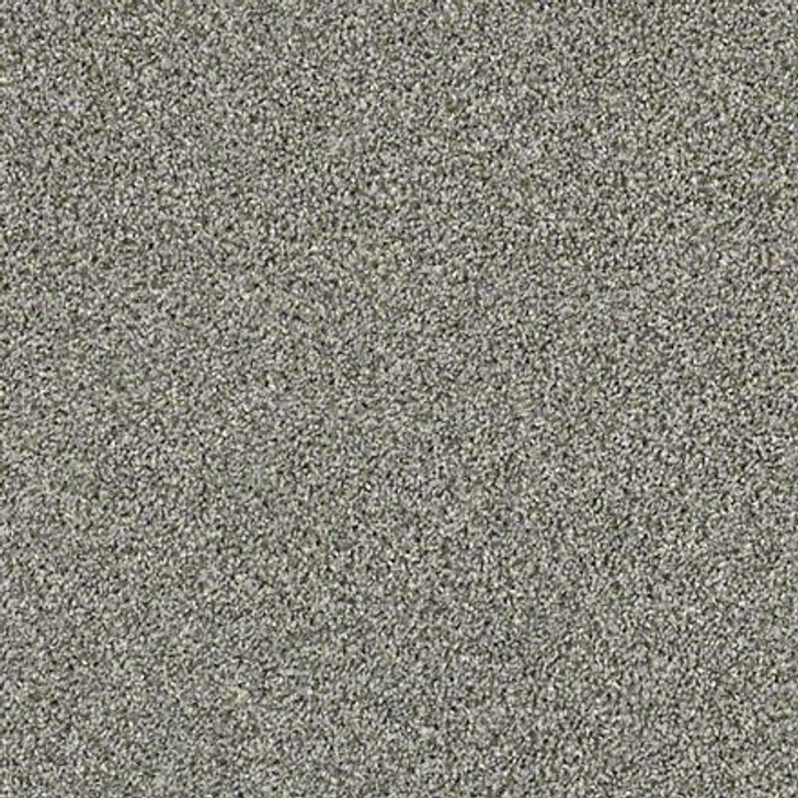 Shaw Shake It Up (T) E9698 Dolphin Classicbac Carpet